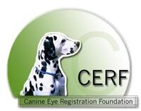 CERF-logo