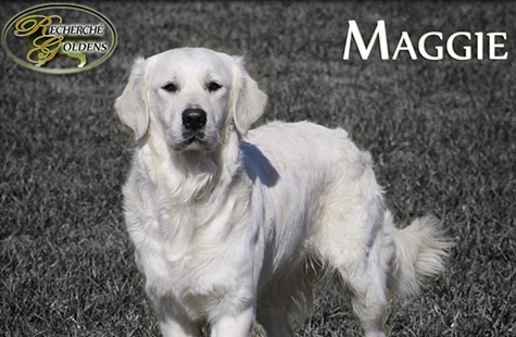 Maggie-new-featured