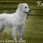 Faith_Bentley_Feb15_8960