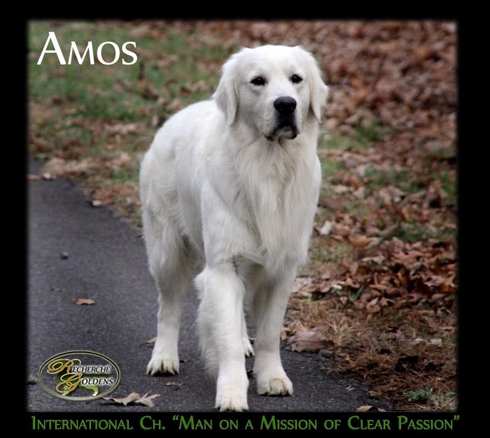 Amos_Dec13_2095