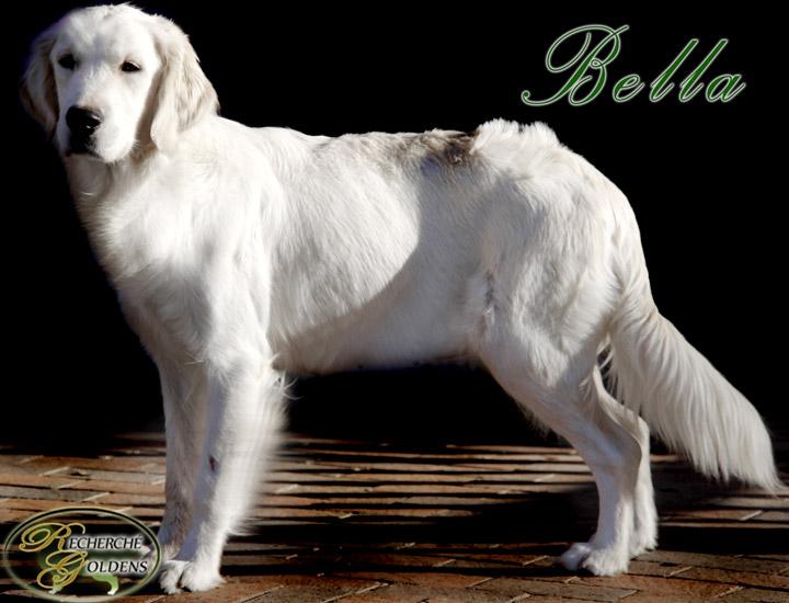 Bella_Dec14_5035