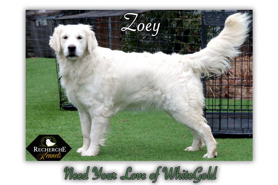 Zoey_Jan18_1416