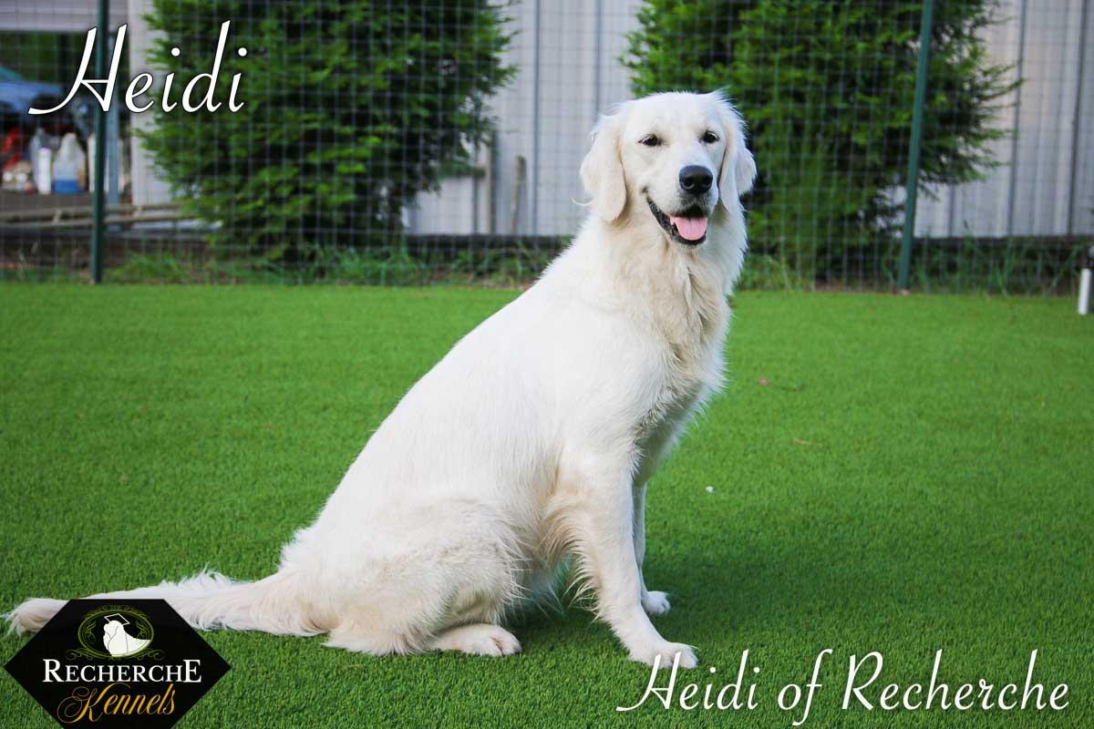 Heidi-10