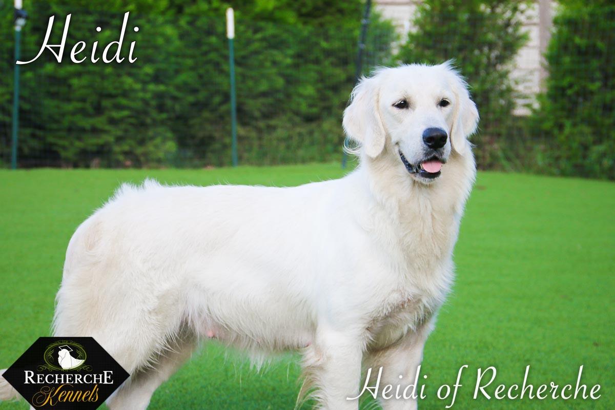 Heidi-16