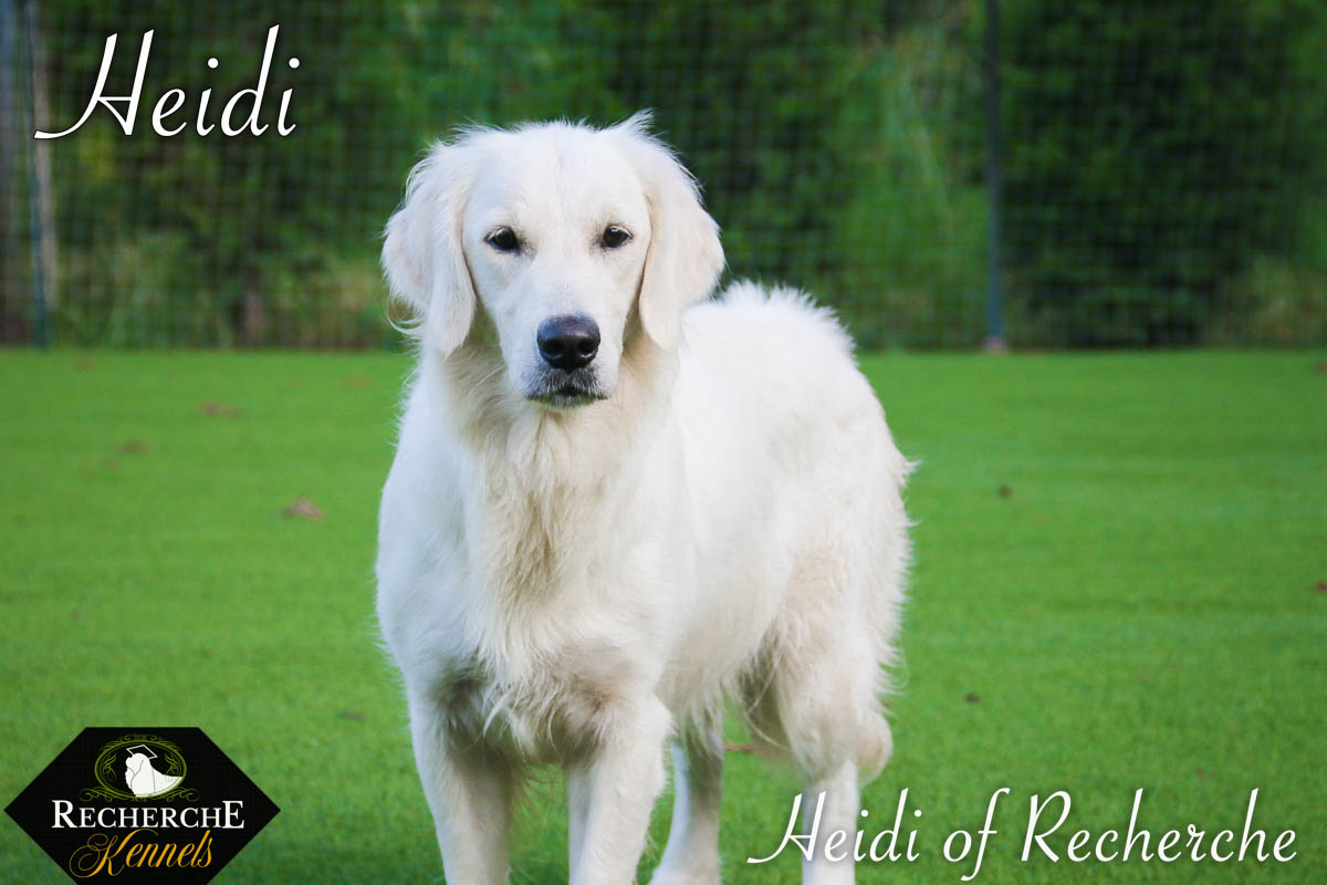 Heidi-18