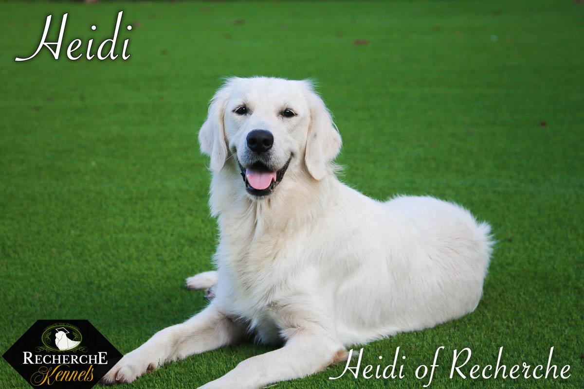 Heidi-19