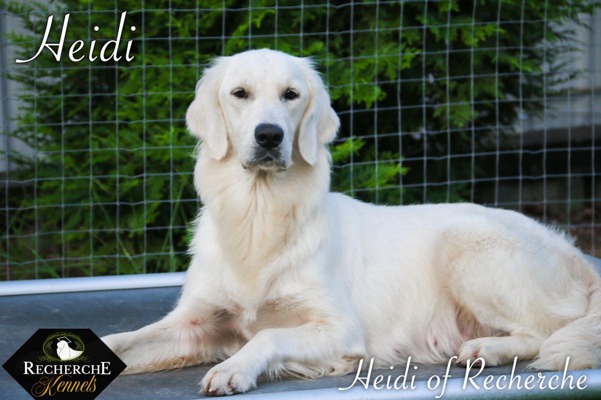 Heidi-4