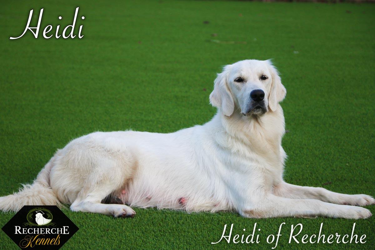 Heidi-6