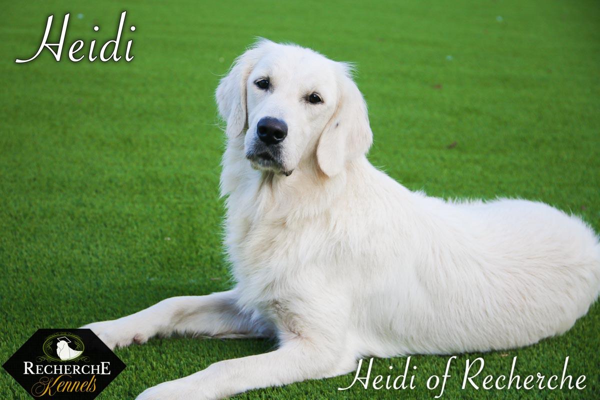 Heidi-8