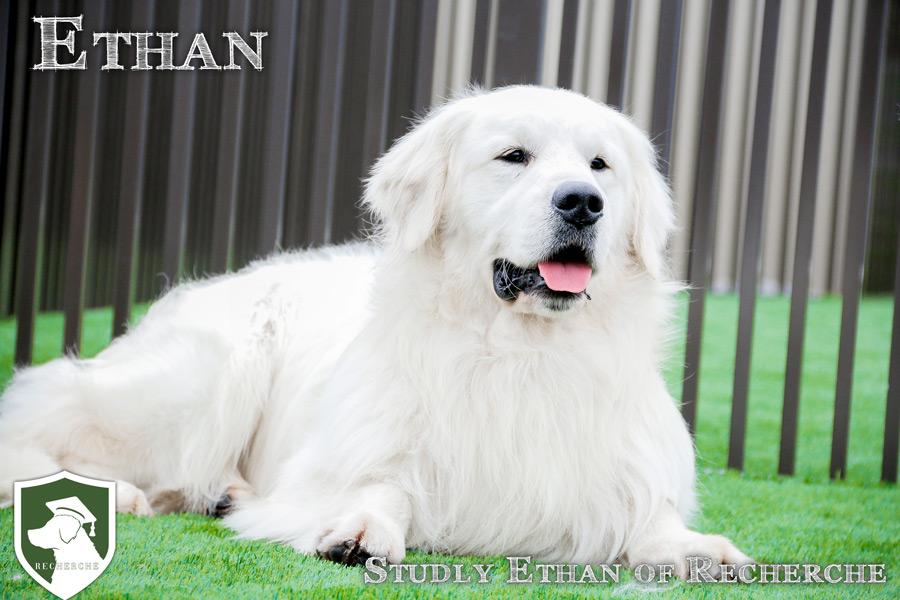 Ethan-25