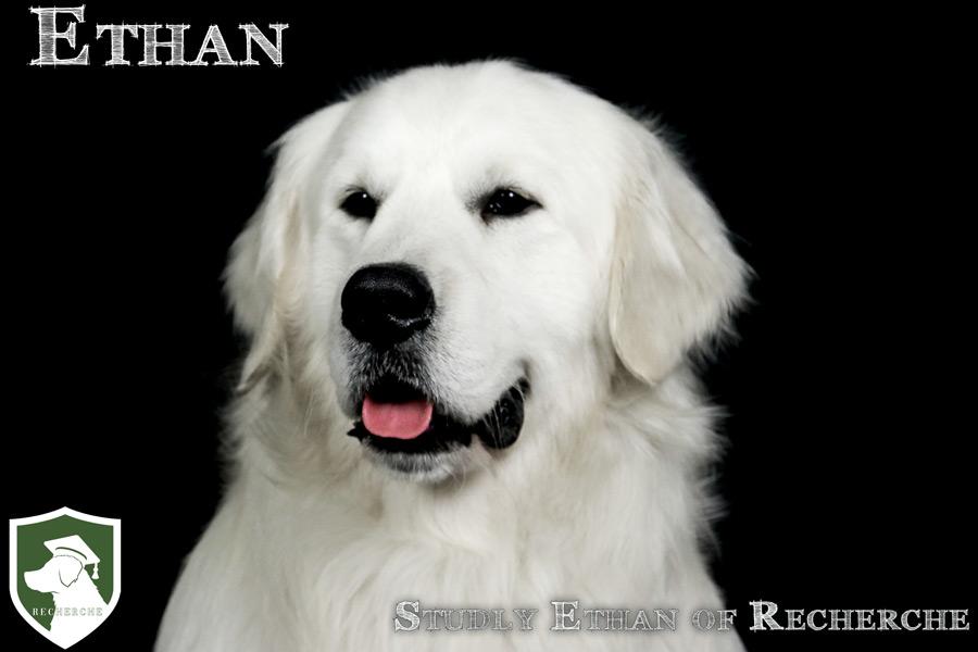 Ethan-60