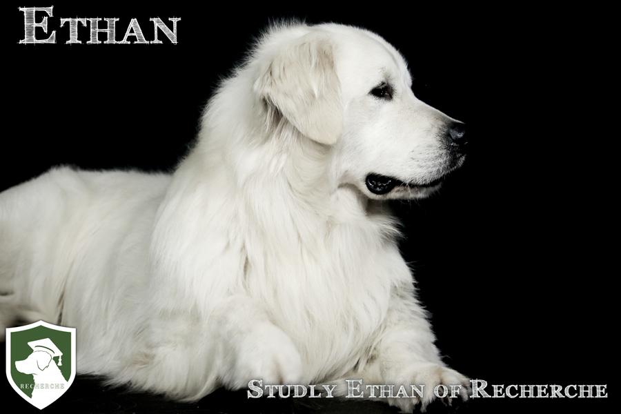 Ethan-86