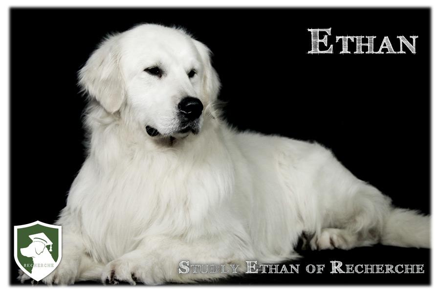 Ethan-92