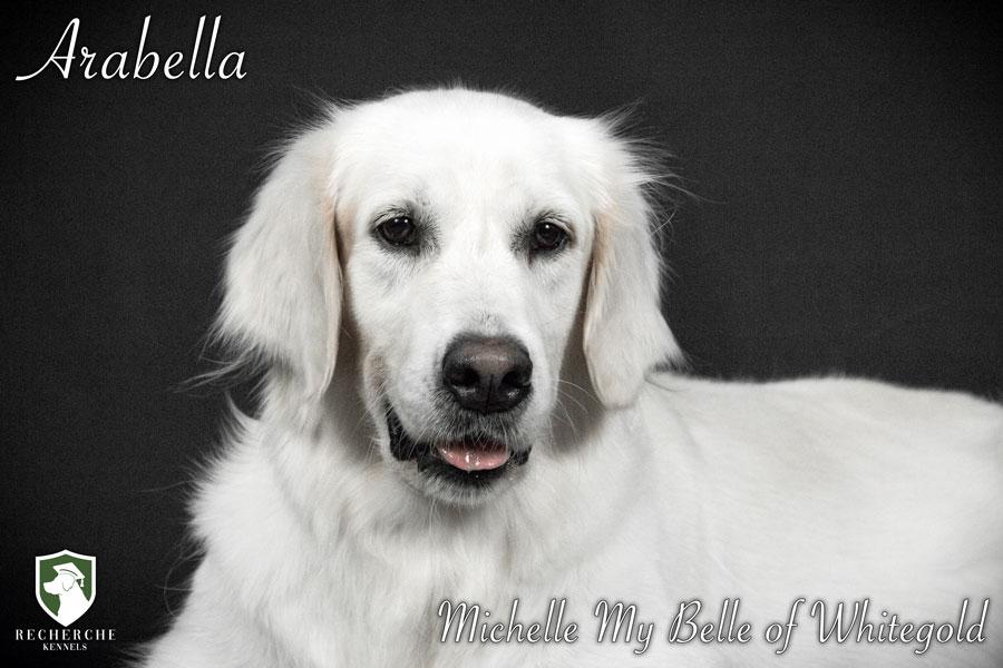 Arabella-12
