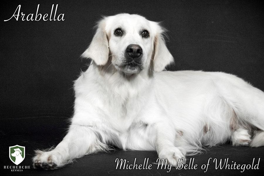 Arabella-15