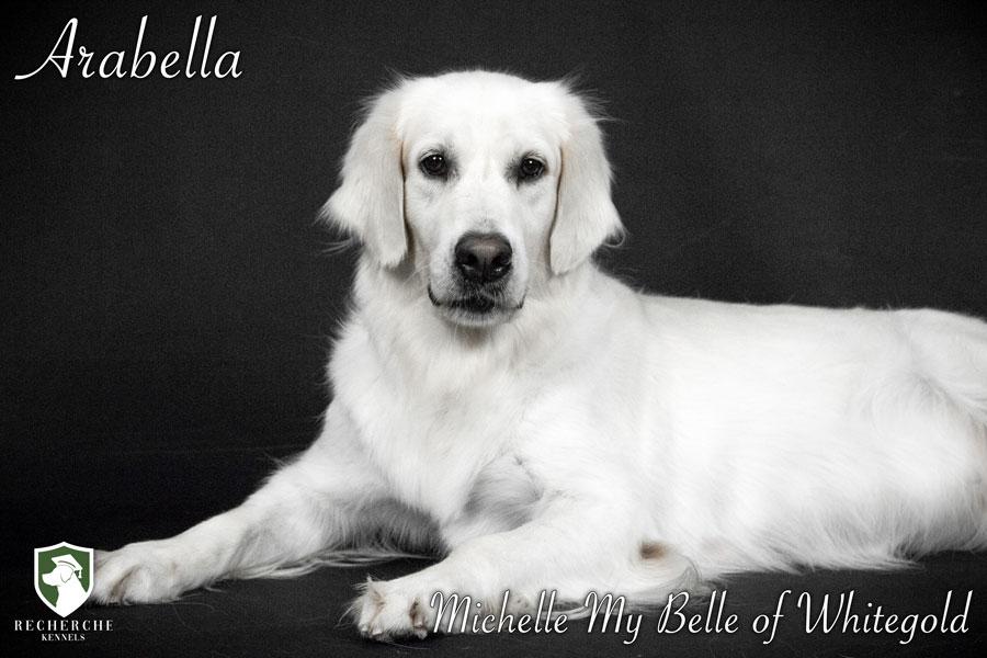 Arabella-7