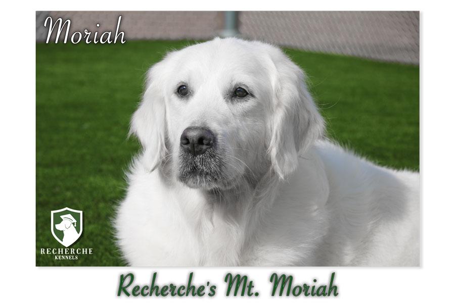 Moriah-70