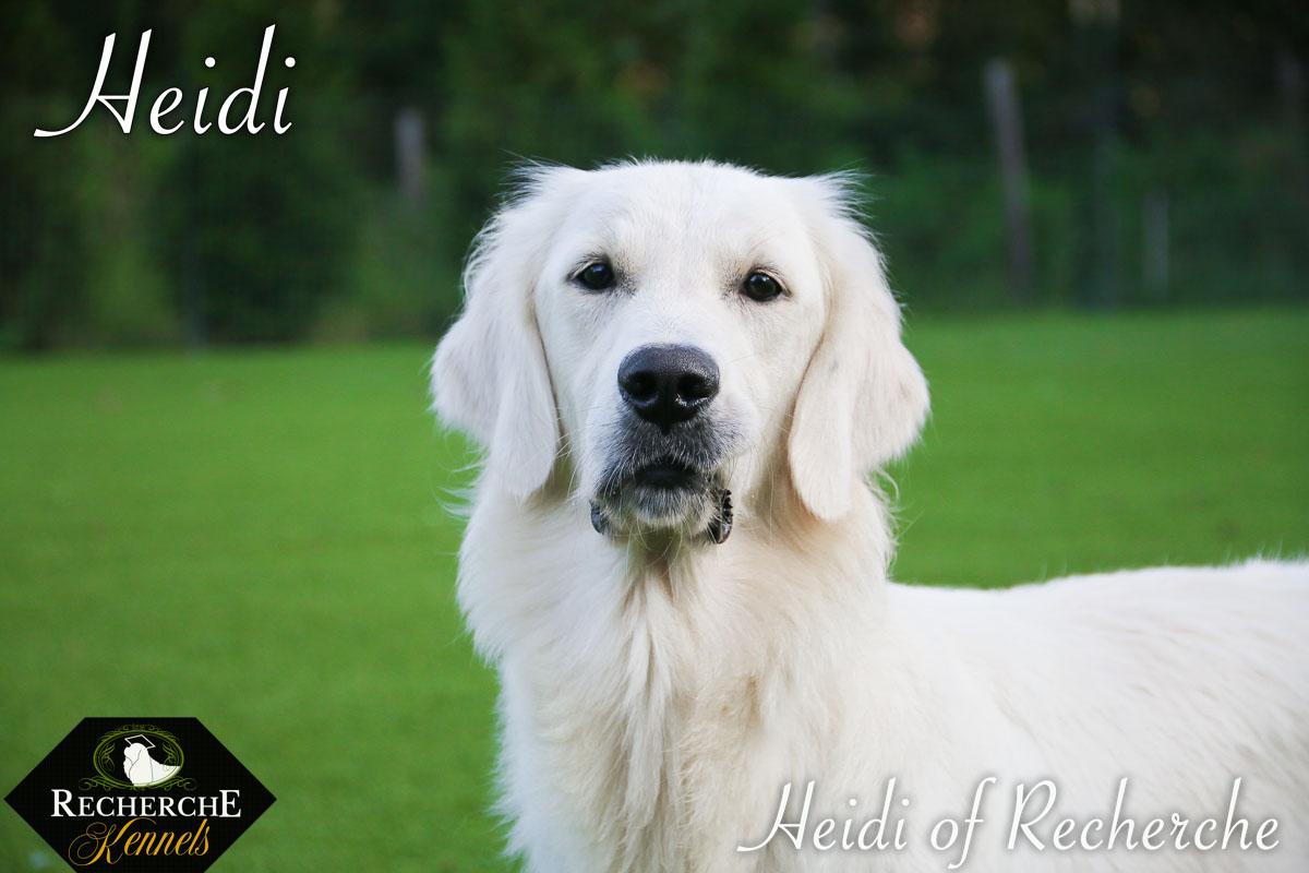 Heidi-7