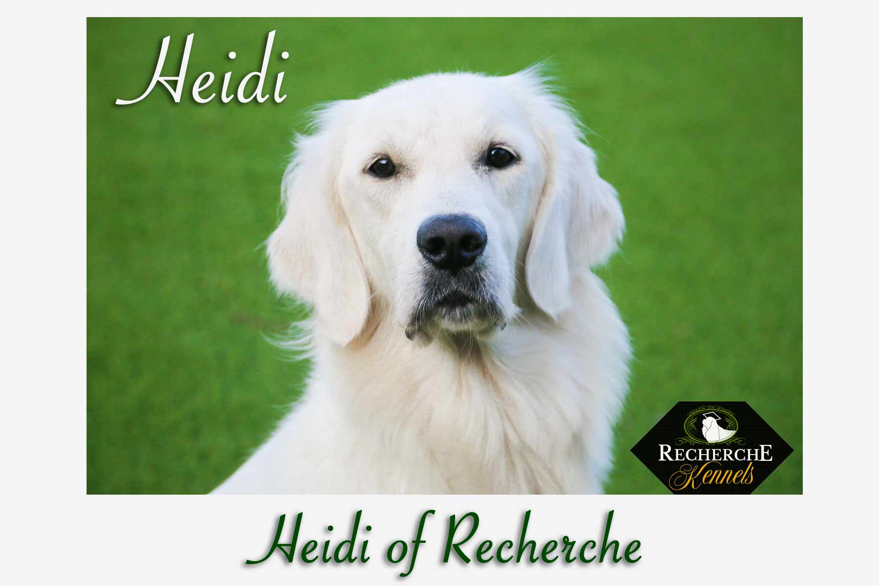 HeidiBest2