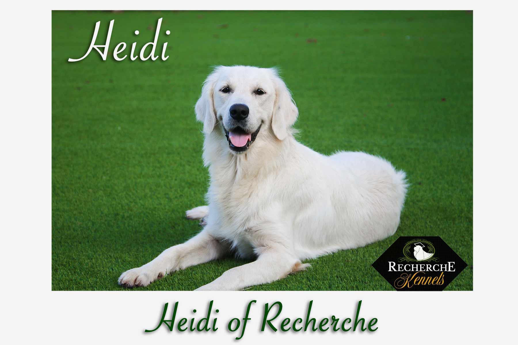 HeidiBest3