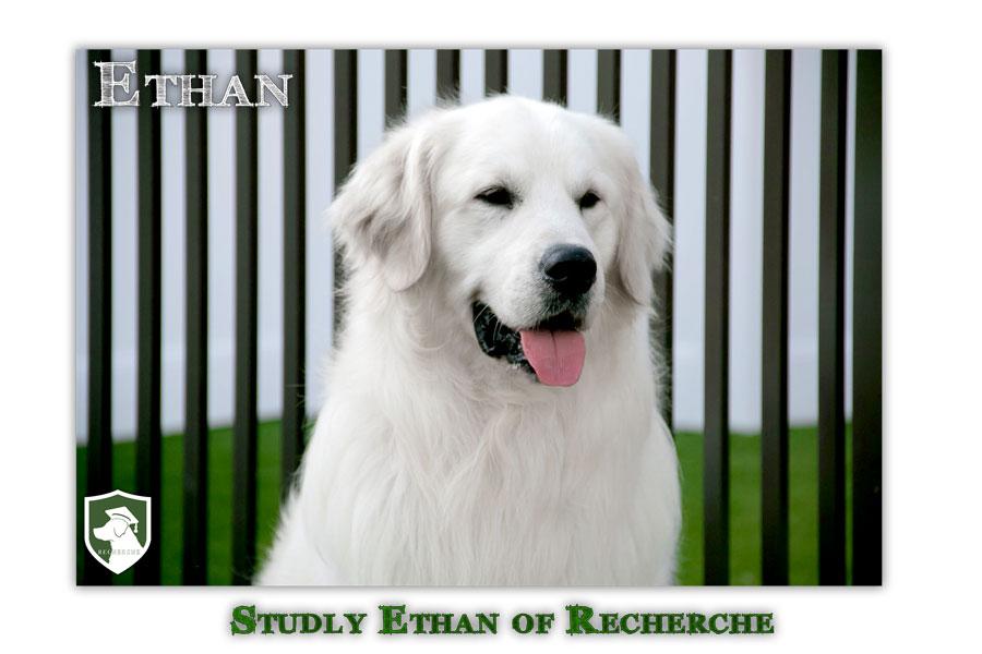 Ethan-14