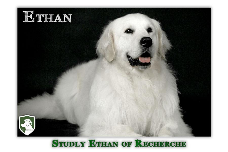 Ethan-35