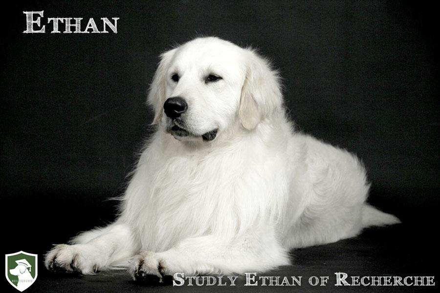 Ethan-42
