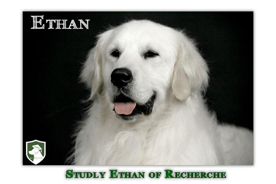 Ethan-43