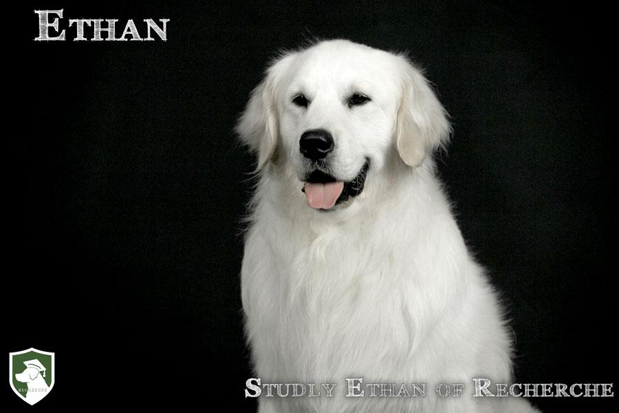 Ethan-45