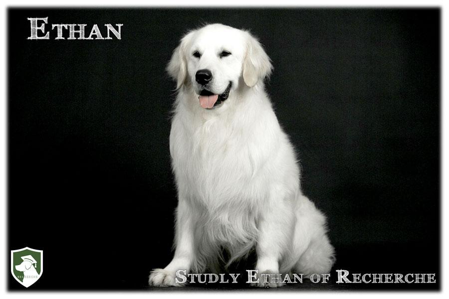 Ethan-46