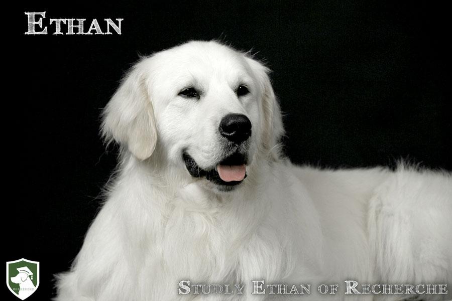 Ethan-51